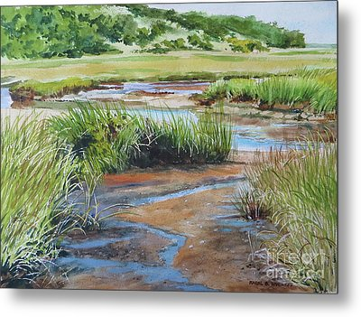 Lowley Marsh Metal Print