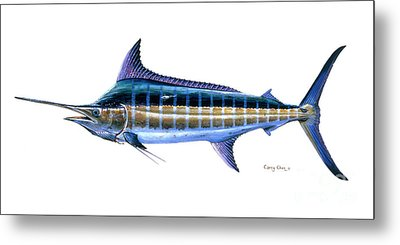 Blue Marlin Metal Print by Carey Chen
