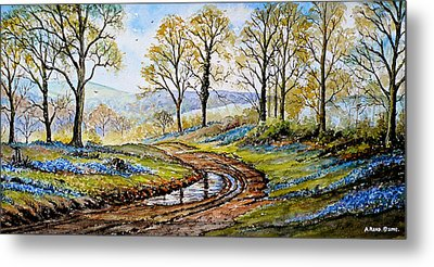 Bluebells In The New Forest Metal Print by Andrew Read