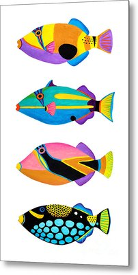 Collection Of Trigger Fishes Metal Print