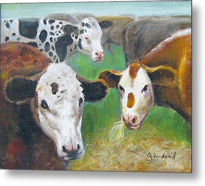 3 Cows Metal Print by Oz Freedgood