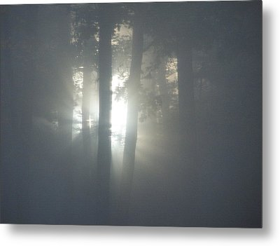 Daybreak Of Creation Metal Print