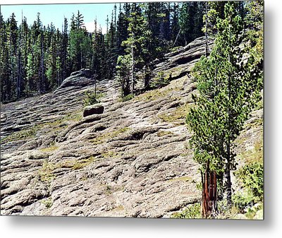 Metal Print featuring the photograph Mount Baldy Trail by Juls Adams
