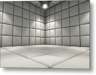 Padded Cell Metal Print by Allan Swart