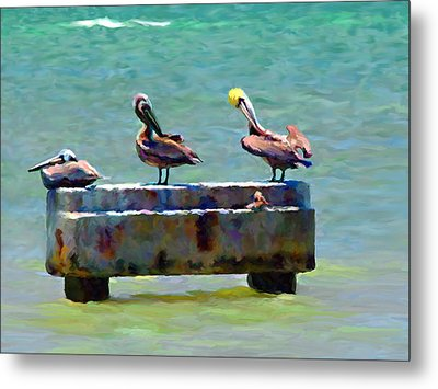 3 Pelicans Metal Print by David  Van Hulst