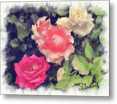 3 Roses Metal Print by Stephen Mitchell