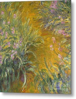 The Path Through The Irises Metal Print by Claude Monet