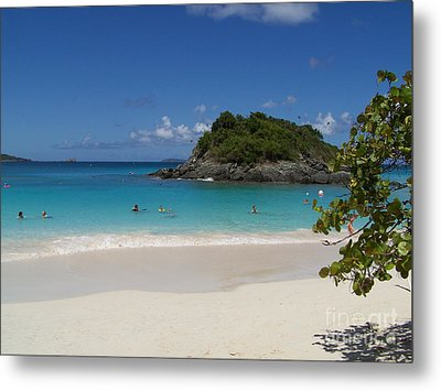 Metal Print featuring the photograph Trunk Bay by Carol  Bradley