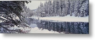 Winter Snowstorm In The Lake Tahoe Metal Print