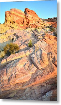 Valley Of Fire Metal Print by Ray Mathis