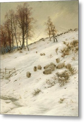 A Flock Of Sheep In A Snowstorm Metal Print