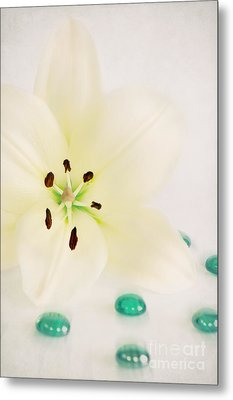 Beauty Metal Print by Angela Doelling AD DESIGN Photo and PhotoArt