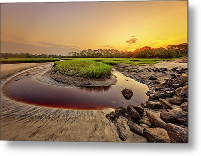 Metal Print featuring the photograph Big Talbot Island by Peter Lakomy