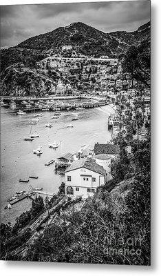 Catalina Island Avalon Bay Black And White Photo Metal Print by Paul Velgos