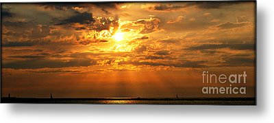 Lake Erie Sunset Metal Print by Lila Fisher-Wenzel