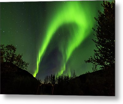 Northern Lights, Aurora Borealis At Kantishna Lodge In Denali National Park Metal Print by Brenda Jacobs