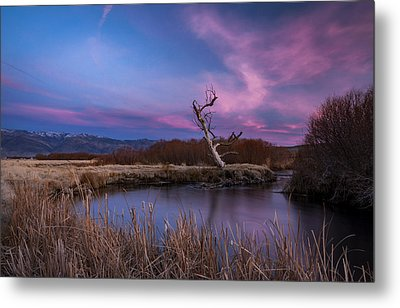 Owens River Sunset Metal Print by Cat Connor