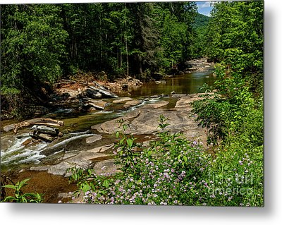 Williams River After The Flood Metal Print by Thomas R Fletcher