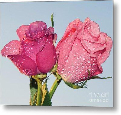 Two Roses Metal Print by Elvira Ladocki