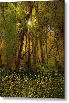 Metal Print featuring the photograph 4368 by Peter Holme III