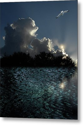 Metal Print featuring the photograph 4377 by Peter Holme III