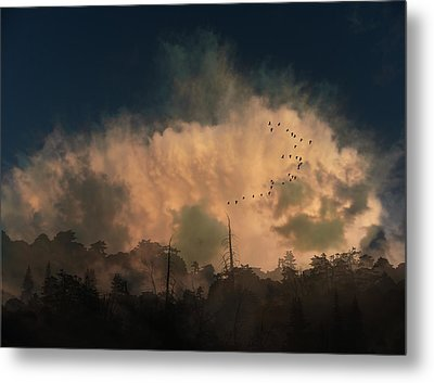 Metal Print featuring the photograph 4382 by Peter Holme III