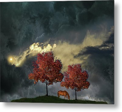 Metal Print featuring the photograph 4384 by Peter Holme III