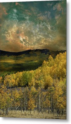 Metal Print featuring the photograph 4394 by Peter Holme III