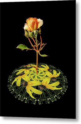 Metal Print featuring the photograph 4407 by Peter Holme III