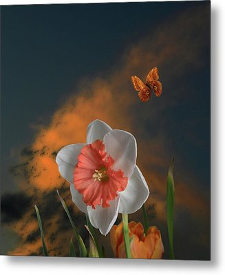 Metal Print featuring the photograph 4413 by Peter Holme III