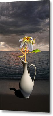 Metal Print featuring the photograph 4416 by Peter Holme III