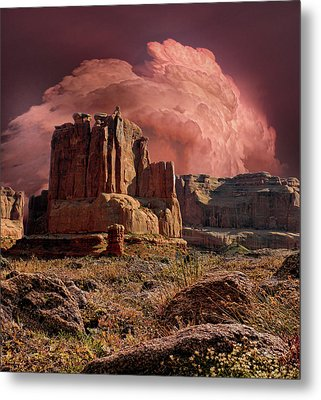 Metal Print featuring the photograph 4417 by Peter Holme III