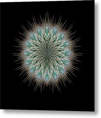 Metal Print featuring the photograph 4418 by Peter Holme III