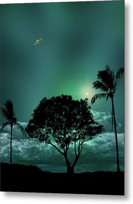 Metal Print featuring the photograph 4420 by Peter Holme III