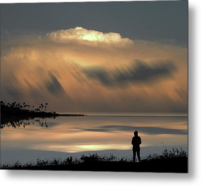 Metal Print featuring the photograph 4459 by Peter Holme III