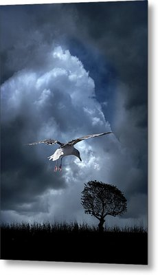 Metal Print featuring the photograph 4472 by Peter Holme III