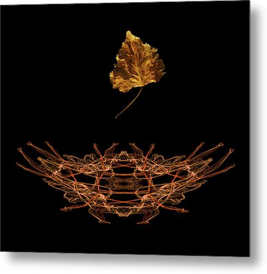 Metal Print featuring the photograph 4473 by Peter Holme III