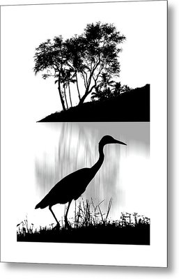 Metal Print featuring the photograph 4474 by Peter Holme III