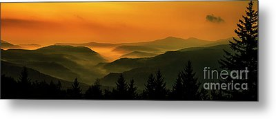Metal Print featuring the photograph Allegheny Mountain Sunrise by Thomas R Fletcher