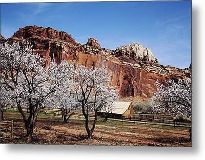 Capitol Reef National Park Metal Print by Mark Smith