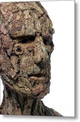 Revered A Natural Portrait Bust Sculpture By Adam Long Metal Print by Adam Long