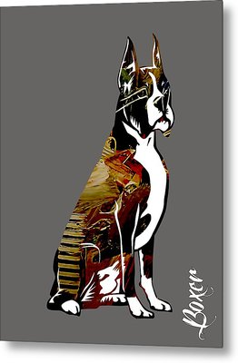 Boxer Collection Metal Print