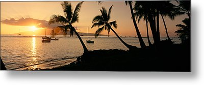 Silhouette Of Palm Trees At Dusk Metal Print