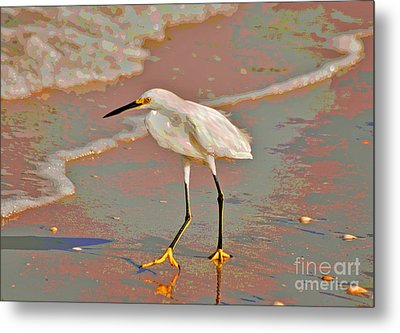 Metal Print featuring the photograph 6- Snowy Egret by Joseph Keane