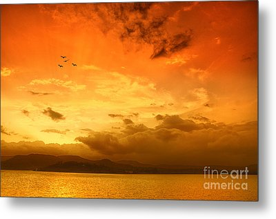 Sunset  Metal Print by Charuhas Images