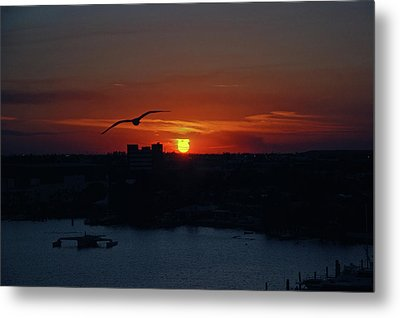 Metal Print featuring the photograph 6- Sunset by Joseph Keane