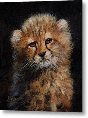 Cheetah Cub Metal Print by David Stribbling