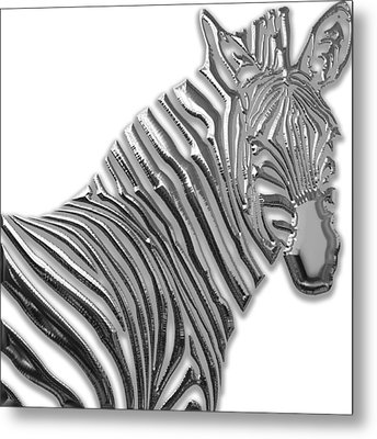 Zebra Collection Metal Print by Marvin Blaine