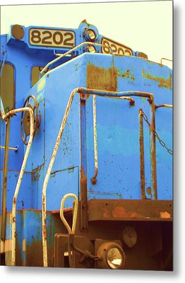 Metal Print featuring the photograph 8202 by Susan Carella