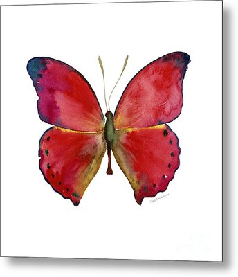 83 Red Glider Butterfly Metal Print by Amy Kirkpatrick